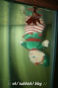Elf on the Shelf Mischief. oh rubbish blog14