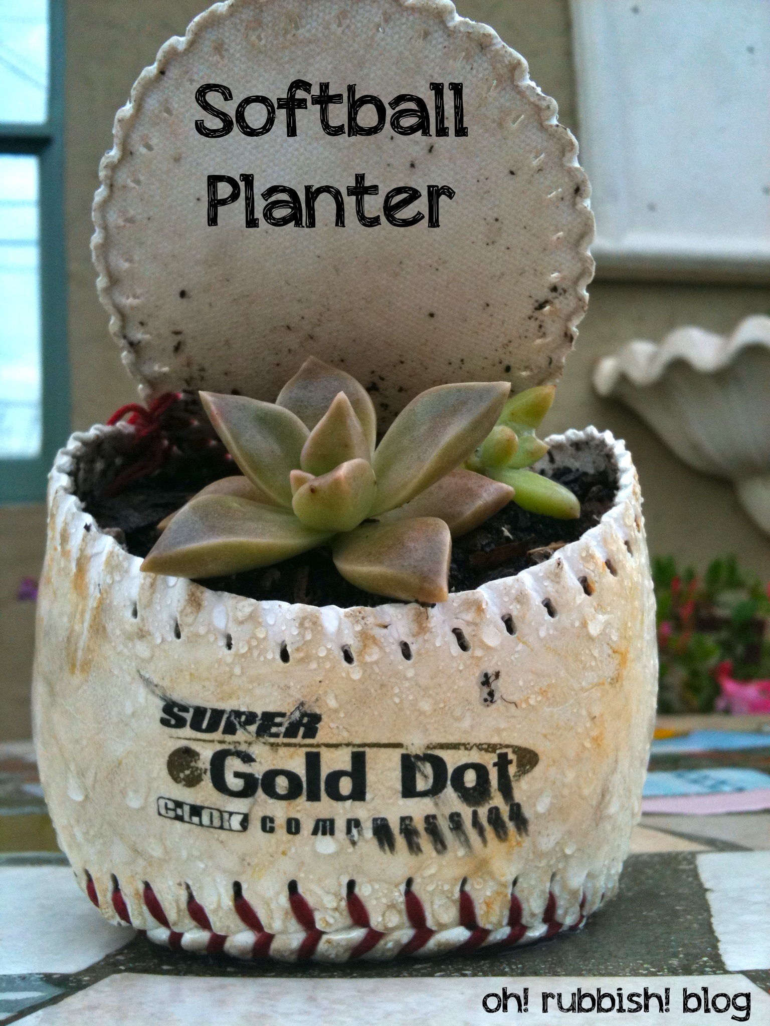 Softball Planter Recycled Garden Projects Upcycled