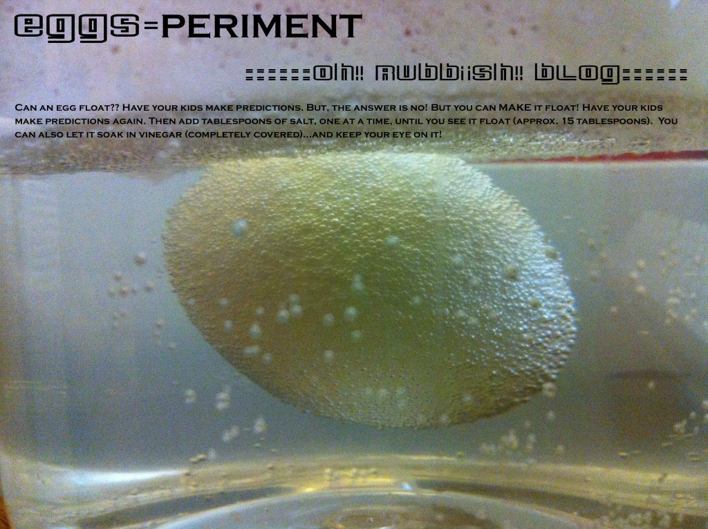 egg-SPERIMENT by oh rubbish blog