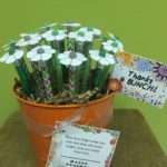Thanks a BUNCH! Pencil Flower Bouquet :: Teacher Appreciation Day Gift Idea :: oh! rubbish! blog